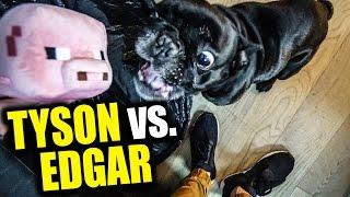Tyson ATTACKIERT Edgar   Ich öffne eure GESCHENKE!