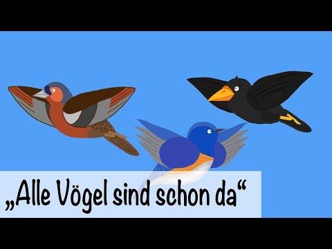 🎵 Alle Vögel sind schon da - Kinderlieder deutsch - Frühlingslieder | muenchenmedia