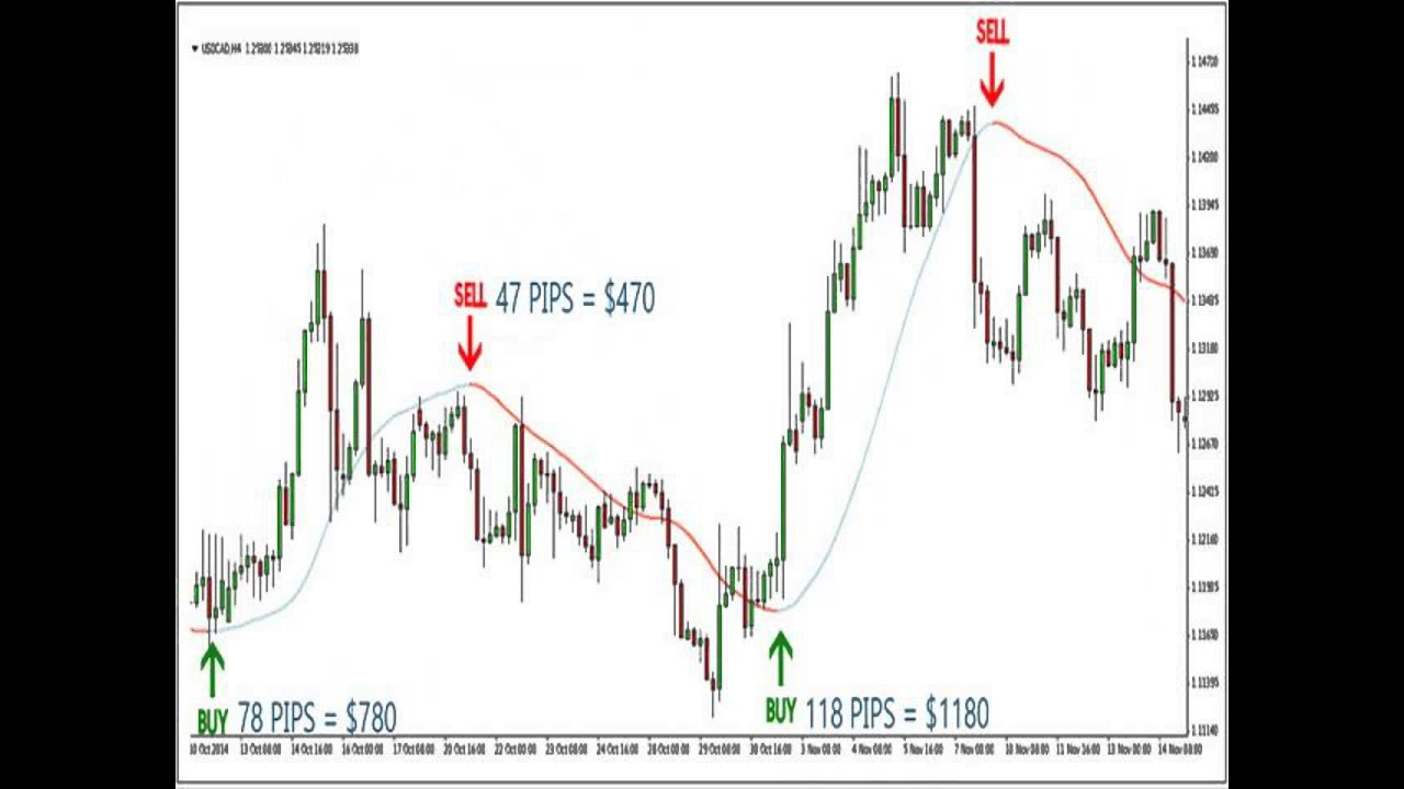 Forex All Pips Indicator Youtube