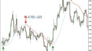 Forex - All Pips Indicator