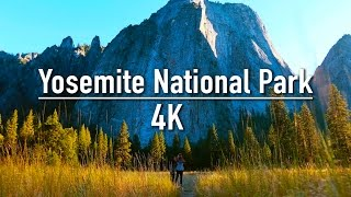 Yosemite National Park | Thru My Eyes 4k