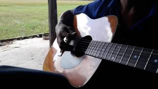 Guitar bolero Tu Do Em Buon *ca le lequyen*