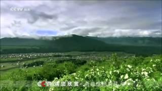 山水间  音悦Tai