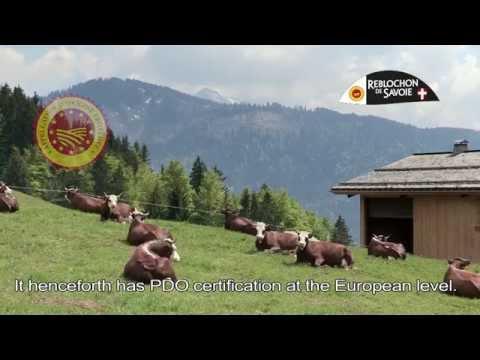 Le Reblochon de Savoie (France)