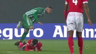 Taça de Portugal FPF - Rio Ave FC 3 - 2 (a.p.) SL Benfica