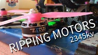 Ripping Motors - Mr.Zitus FPV