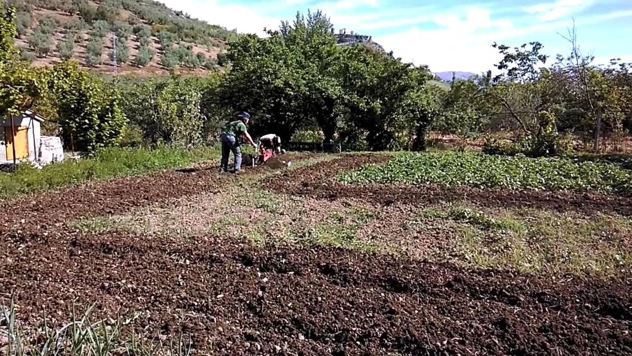 Arado y preparaci n de la tierra para siembra en huerta for Preparar el huerto en invierno