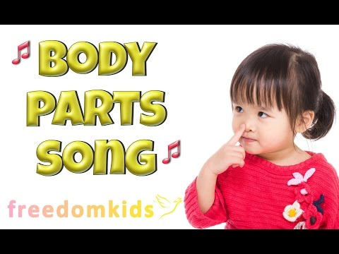 BODY PARTS Song |  Freedom Kids