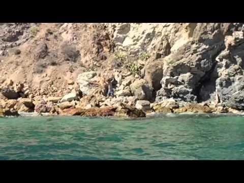 Catalina adventure 2015 !