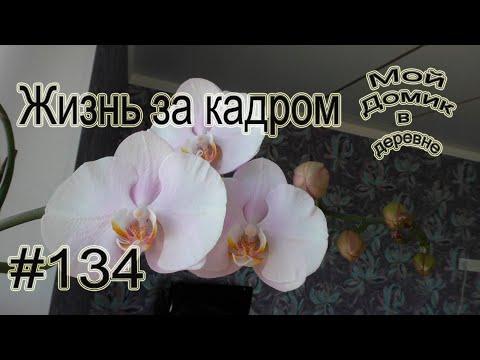 #134 Жизнь за кадром ! Почему так мало новых видео на канале ?