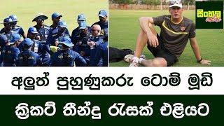 අලුත් පුහුණුකරු ටොම් මූඩි ක්රිකට් තීන්දු රැසක් එළියට | Tom Moody & Sri Lanka Cricket Team