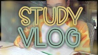 STUDY VLOG   STUDY WITH ME