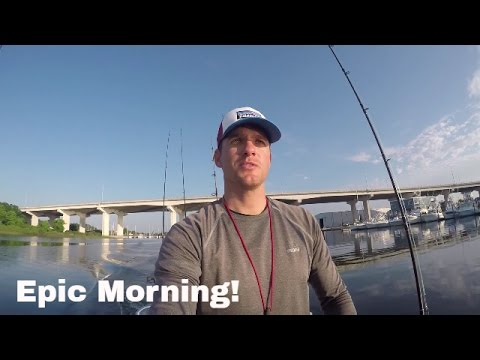 Fishing A Shipwreck off the Florida Gulf Coast | Big Fish