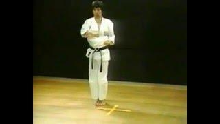 Ката каратэ сетокан - Хейан Годан(Ката каратэ сетокан, последняя из пяти ката серии Хэйан, старое название Пинан. Созданное мастером Ясуцунэ..., 2016-05-15T06:49:47.000Z)