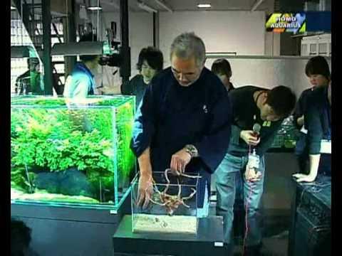 Takashi Amano-(nano)