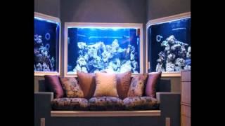 Aquarium Design Software