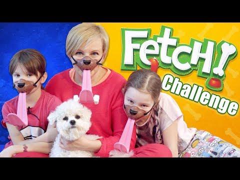 Fetch! Gra zręcznościowa, TM Toys - Challenge