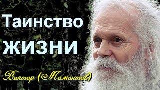 Тайны жизни! Встреча с БОГОМ - архимандрит Виктор (Мамонтов)