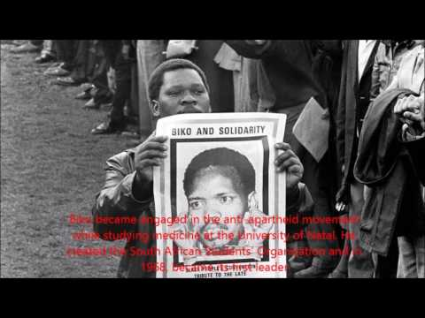 steve biko died | how did steve biko die | steve biko cause of death