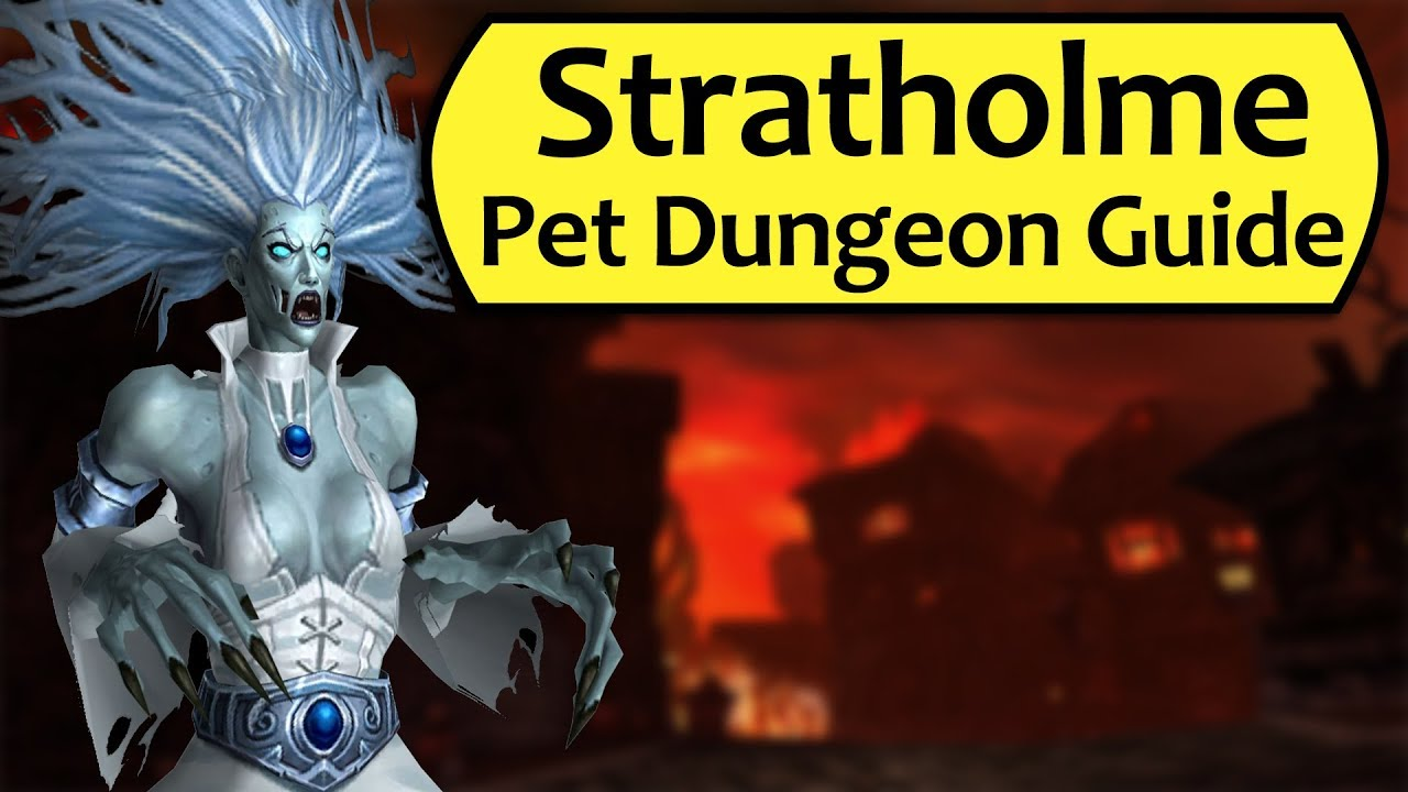 Stratholme Pet Battle Dungeon Complete Guide