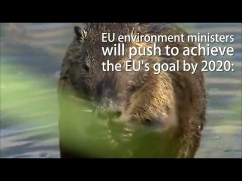 EU biodiversity action plan
