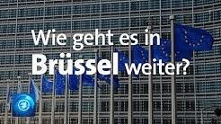 Nach der Europawahl: Schwierige Mehrheitsfindung im Europäischen Parlament