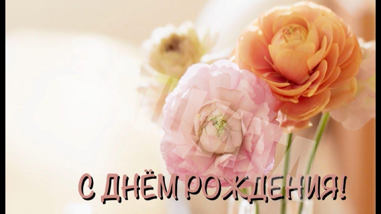 Видео открытка с днем рождения женщине на вайбер телефона, лосенко