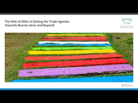 The Role of SDGs in Setting the Trade Agenda: Towards Buenos Aires and Beyond