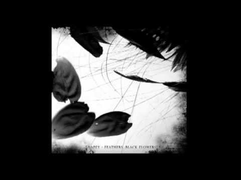 Apey - Feathers, Black Flowers 2010 (FULL ALBUM)