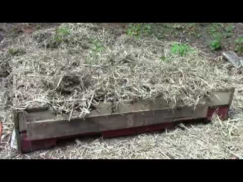 pallets-for-raised-beds-part-2