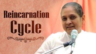 Reincarnation Cycle