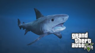 How To Play As A SHARK on GTA 5 - Play As A Shark, Killer Whale, Sting Ray & Fish!
