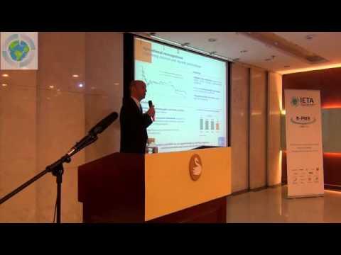 B-PMR Shanghai: Day 1 Theme 1 ENEL Presentation