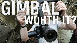 Is a GIMBAL worth it?
