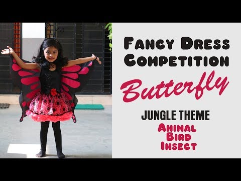 fancy-dress-competition/-jungle-theme/animal,-birds,insect/-butterfly