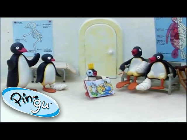 Pingu And His Family Learn About The World! @Pingu - Official Channel 1 Hour | Cartoon For Kids