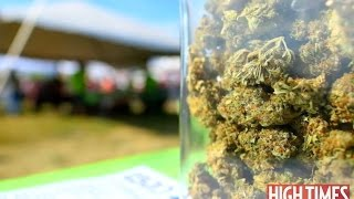 2016 Michigan Medical Cannabis Cup: Highlights
