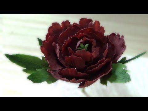 Пион из Мастики. Сахарные цветы / Peony Of Mastic. Sugar Flowers - Я - ТОРТодел!