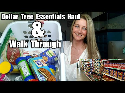 Dollar Tree Essentials Haul *PLUS* Walk Through To Show You / AMAZING Selection