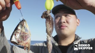 Which BAIT Works Best for Beach Fishing?