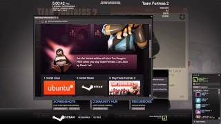 TF2 Linux Update: Limited Edition Linux Item, Tux Misc. (Feb.14, 2013) - HD