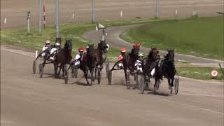Vidéo de la course PMU PRIX LEO SCHALKOORT