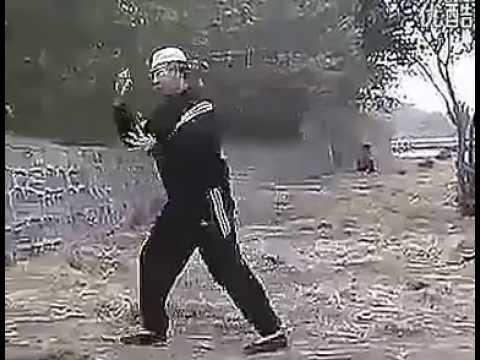 河南周口心意六合拳教学全集 Zhoukou Henan Xinyi Liuhe Quan