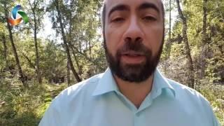 Константин Довлатов - Серия видео-уроков «Формула Общения». Урок 2