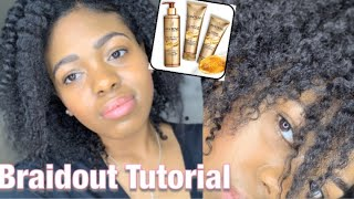 Easy Braid Out Tutorial| Pantene Gold Series Review| Low porosity hair
