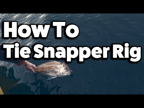 How To Tie Snapper Rig  Snell Twin Hooks Step By Step In 4k By Reedy's Rigs