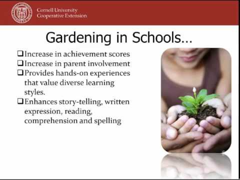 The Power Behind Garden-Based Learning and The Top Takeaways ...