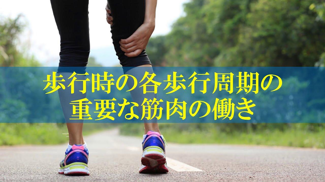 「歩行周期」の画像検索結果