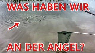 ANGELN :D (Hecht und Forelle)