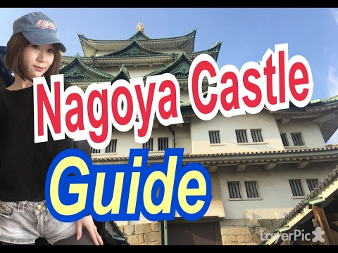 Nagoya Castle Guide  (sightseeing in Aichi)